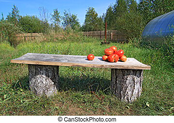 ripe tomatoes on wooden bench