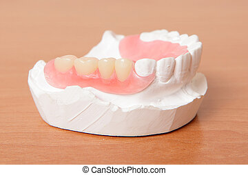 acrylic denture False teeth on the table