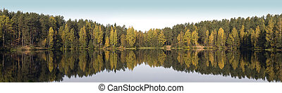 Wild forest lake - Panoramic view of the wild forest lake...