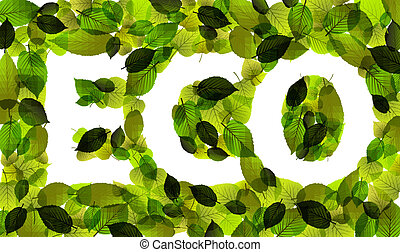 Eco vector word made from leafs