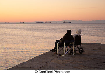Disabled person in a wheelchair and his friend looking the...