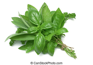 Herb Series Mixed Herbs - Mixed Herbs, basil, sage, parsley...