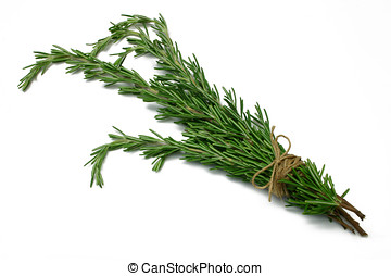 Herb Series Rosemary - Rosemary (herb) tied in a bunch with...
