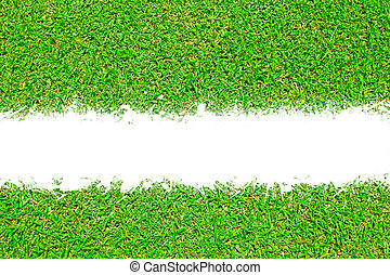 texture of green grass with white scratch space