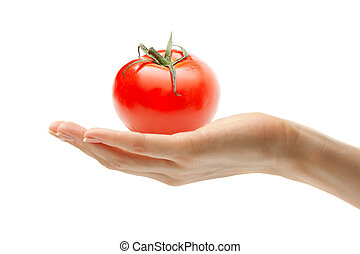 Female hand with a tomato