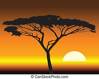 african sunset backgroundvector illustration