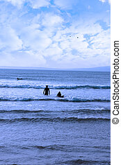 silhouette of surfers walking from the sea