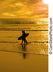 silhouette of surfing couple walking from the sea
