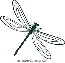 abstract dragonfly vector illustration - abstract dragonfly....