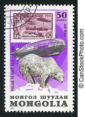 Graf, zeppelin, polar, oso