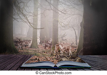 Forest scene in magic book with fallow deer in trees - Scene...