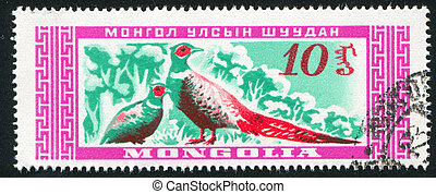 Two Birds pheasant - MONGOLIA - CIRCA 1959: stamp printed by...