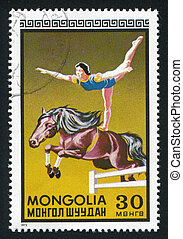 woman equestrian - MONGOLIA - CIRCA 1973: stamp printed by...