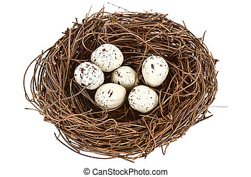 A bird nest with six eggs isolated on white
