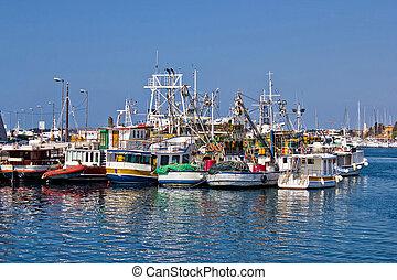 Fishing boats fleet in Harbor, Zadar, Dalamtia, Croatia