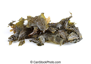 Seaweed Sugar Kelp - Dried irish Sugar Kelp seaweed isolated...