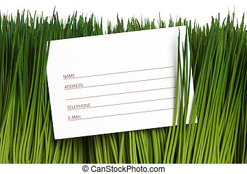 Address Book and green grass close up
