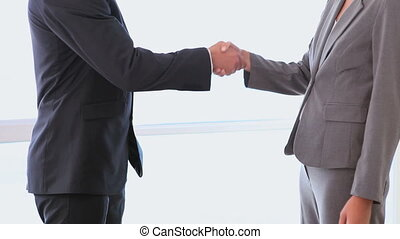Business people shaking hands after negotiation
