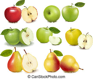 Set of red and green apple fruits with cut and pears Vector...