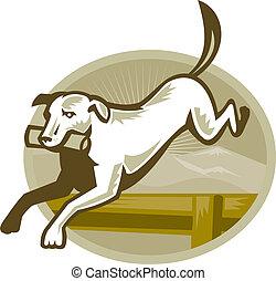 Retriver Dog Trainiing Jumping Hurdle Retro