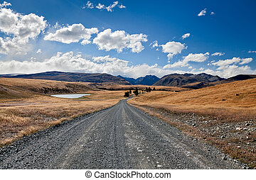 Road alongside Lake Tepako