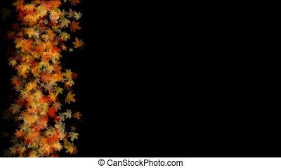 autum leaves floating