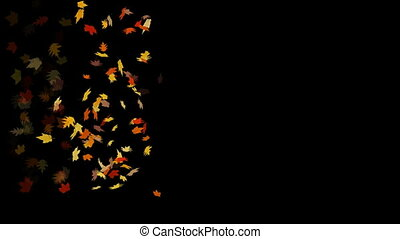 colorful leaves of autumn