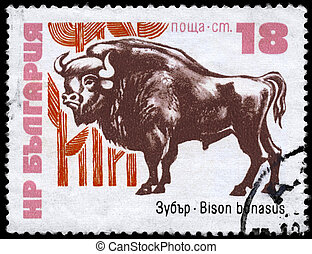 BULGARIA - CIRCA 1973 Bison - BULGARIA - CIRCA 1973: A Stamp...