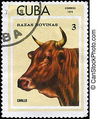 CUBA - CIRCA 1973 Criollo - CUBA - CIRCA 1973: A Stamp...
