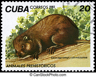 CUBA - CIRCA 1982 Hutia - CUBA - CIRCA 1982: A Stamp printed...