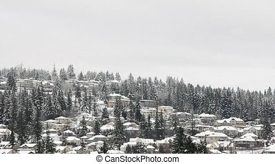 Homes in Mountain Winter Scene - Houses Nestled Amongst Tall...