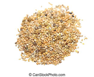 pile assorted seed for exotic birds
