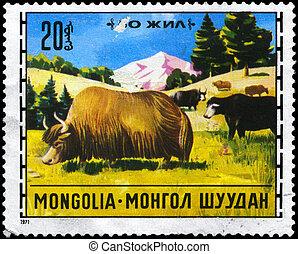MONGOLIA - CIRCA 1971 Yaks - MONGOLIA - CIRCA 1971: A Stamp...