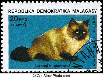 MALAGASY - CIRCA 1985 Siamese