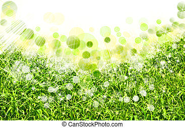 abstract spring backgrounds with defocused bokeh
