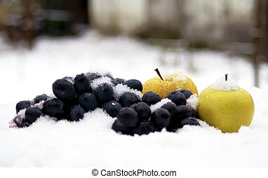 apples and grapes on snow in garden
