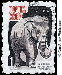 URSS, -, environ, 1964, Éléphant