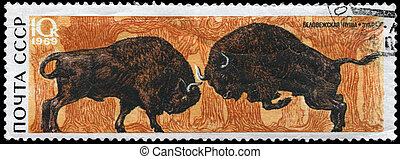 USSR - CIRCA 1969 Bison - USSR - CIRCA 1969: A Stamp printed...