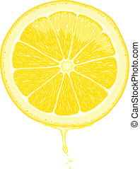 Lemon Slice - Vector - Illustration of a lemon slice with...
