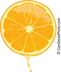 Orange Slice - Vector - Illustration of orange slice with...