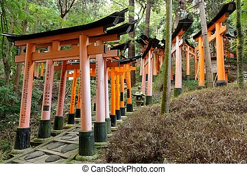 fushimi inari shrine - fushimi Inari shrine gates in forest,...
