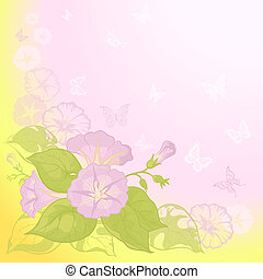 Background with flowers Ipomoea - Ipomoea flowers and...