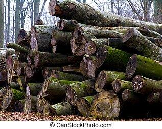 A heap of trunks