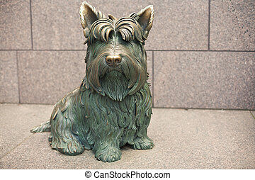 Dog at the Franklin Delano Roosevelt Memorial - Dog Scottish...