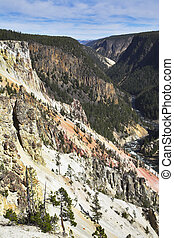 Woody canyon of the river in well-known Yellowstone. More...