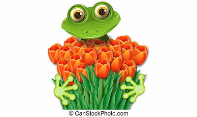 frog and tulips - video, merry green frog with red tulips