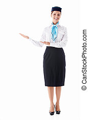 Air hostess - Stewardess in uniform on a white background