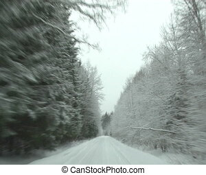 car window forest winter