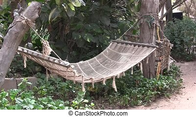 Hammock swinging between palm trees