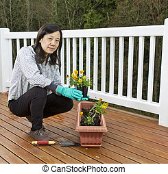 Planting Flowers for the Patio - Asian women planting...